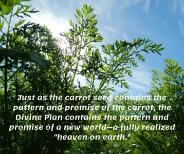Divine Plan contains pattern promise new world heaven on earth