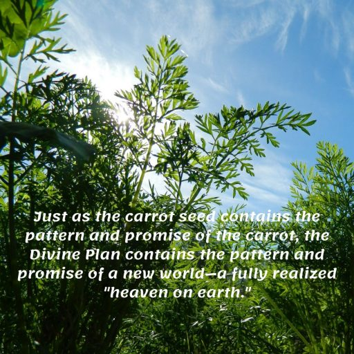 Just as the carrot seed contains the pattern and promise of the carrot, the Divine Plan contains the pattern and promise of a new world - a fully realized heaven on earth.
