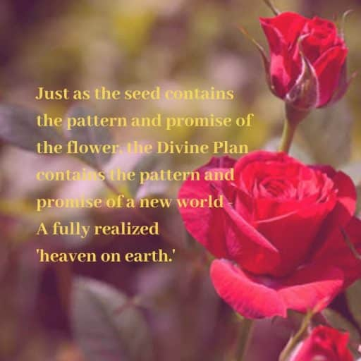 Just as the seed contains the pattern and promise of the flower, the Divine Plan contains the pattern and promise of a new world - A fully realized 'heaven on earth.'