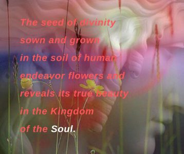 Seed of divinity flowers reveals kingdom of soul