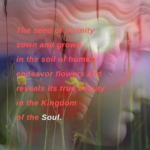 The seed of divinity sown and grown in the soil of human endeavor flowers and reveals its true beauty in the Kingdom of the Soul.