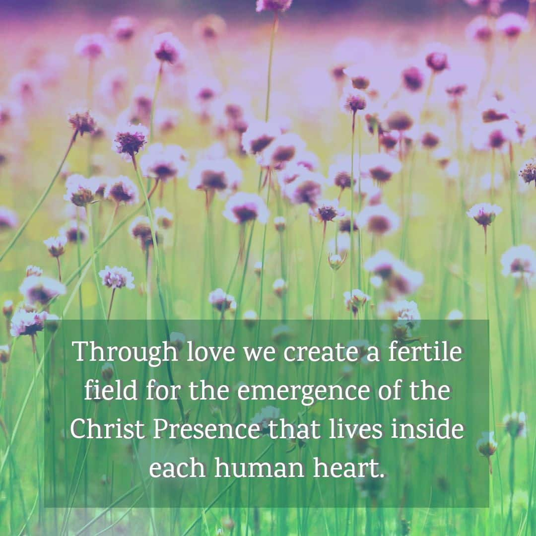 Through love we create a fertile field for the emergence of the Christ Presence that lives inside each human heart.