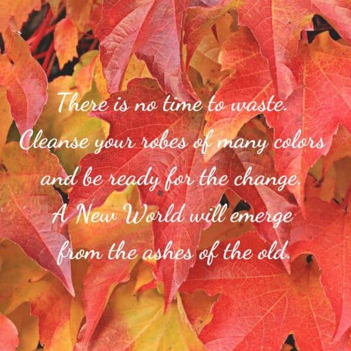 There is no time to waste. Cleanse your robes of many colors and be ready for the change. A New World will emerge from the ashes of the old.