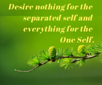 Desire nothing separated self everything one Self