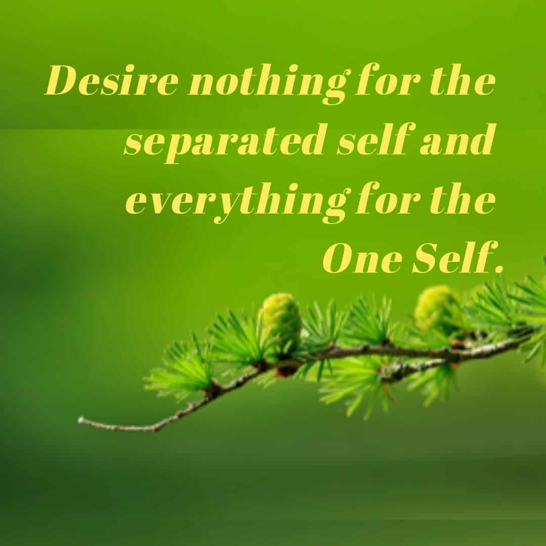 Desire nothing for the separated self and everything for the One Self.