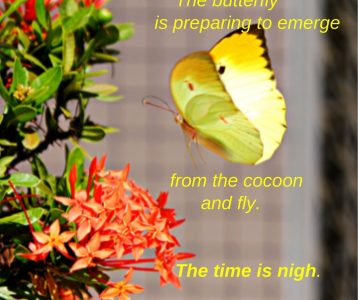 Emergence time near