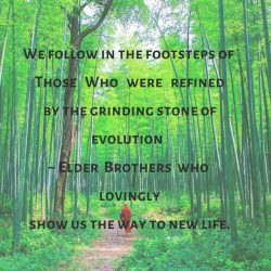 Follow footsteps Elder Brothers show way new life