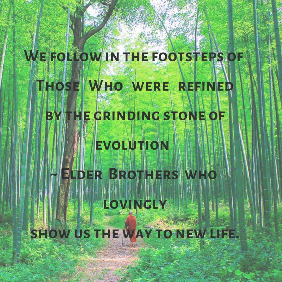 We follow in the footsteps of Those Who were refined by the grinding stone of evolution - Elder Brothers who lovingly show us the way to new life.