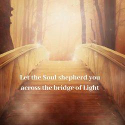 Let soul shepherd across bridge of Light