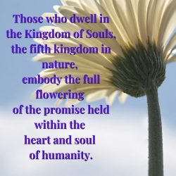 Members of Kingdom of Souls embody heart and soul of humanity