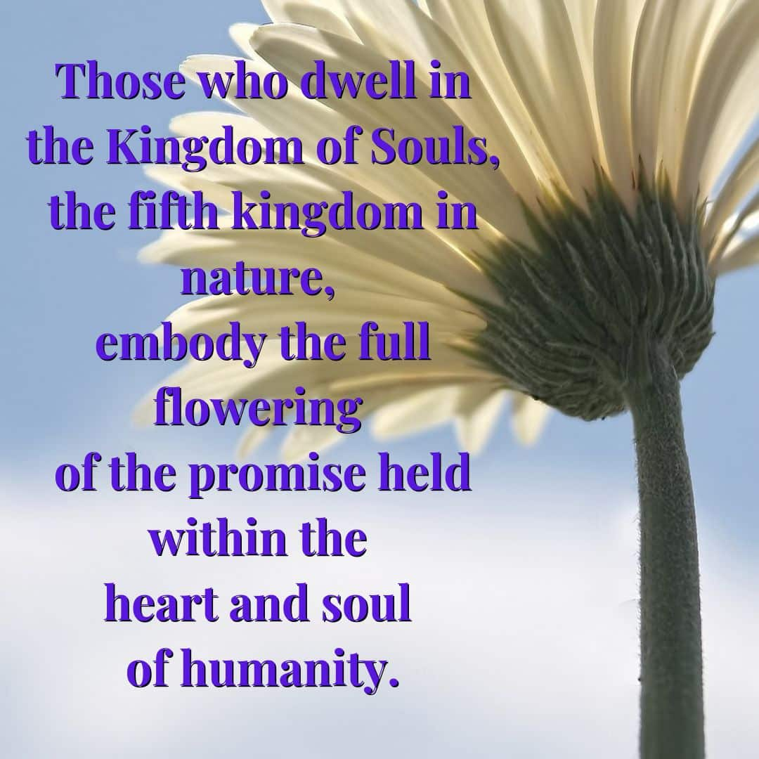 Those who dwell in the Kingdom of Souls, the fifth kingdom in nature, embody the full flowering of the promise held within the heart and soul of humanity.
