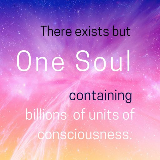 There exists but One Soul containing billions of units of consciousness.