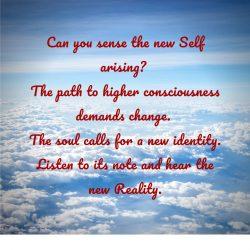 Sense new self path new identity listen