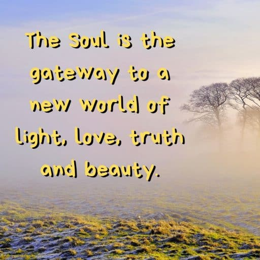 The Soul is the gateway to a new world of light, love, truth and beauty.