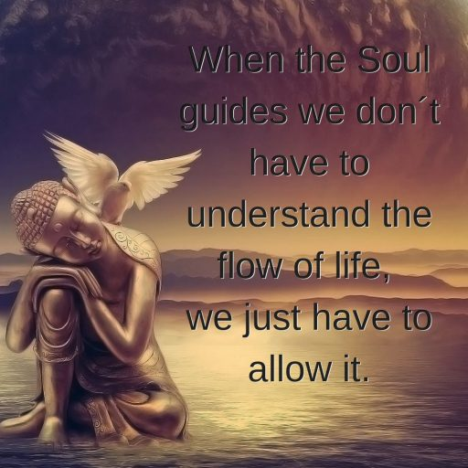When the Soul guides we don´t have to understand the flow of life, we just have to allow it.