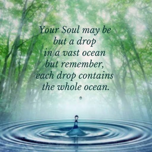 Your Soul may be but a drop in a vast ocean but remember, each drop contains the whole ocean.