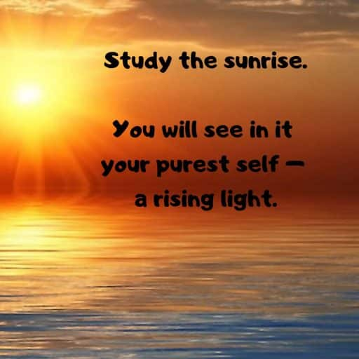 Study the sunrise. You will see in it your purest self - a rising light.