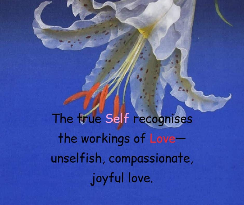 The true Self recognises the workings of Love - unselfish, compassionate, joyful love.