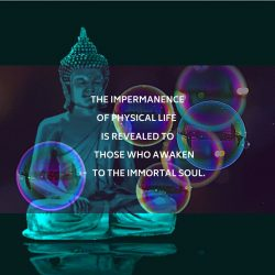 Impermanence Immortal Soul