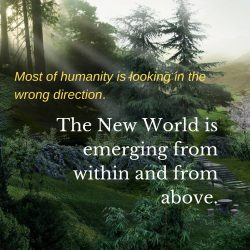 Looking wrong direction New World emerging from within