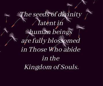 Seed divinity human blossom Kingdom Souls