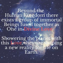Beyond the human kingdom there exists a group of immortal Beings