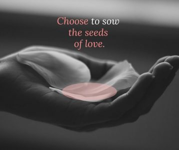Choose to sow the seeds of love