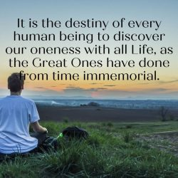 It is the destiny of every human being to discover our oneness with all Life