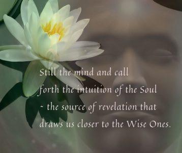 Still mind soul intuition source revelation closer Wise Ones