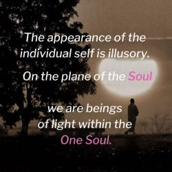 The appearance of the individual self is illusory