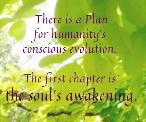 There is a Plan for humanity's conscious evolution. The first chapter is the soul's awakening.