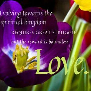 Evolving towards the spiritual kingdom