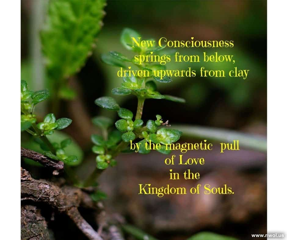 New consciousness springs from below, driven upwards from clay by the magnetic pull of Love in the Kingdom of Souls.