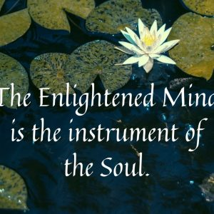 The Enlightened Mind is the instrument of the Soul