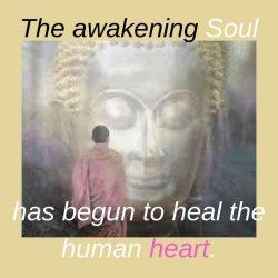 The awakening Soul has begun to heal the human heart