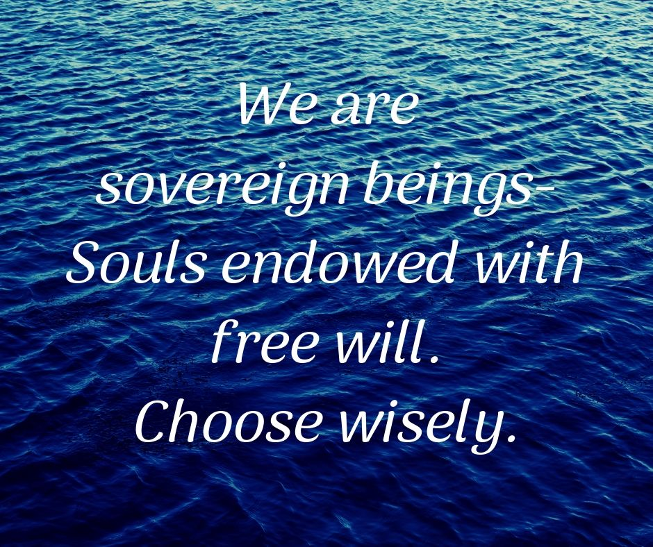 We are sovereign beings—Souls endowed with free will. Choose wisely.