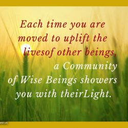 Each time you are moved to uplift the lives of other beings