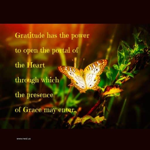 Gratitude has the power to open the portal of the Heart through which the presence of Grace may enter.