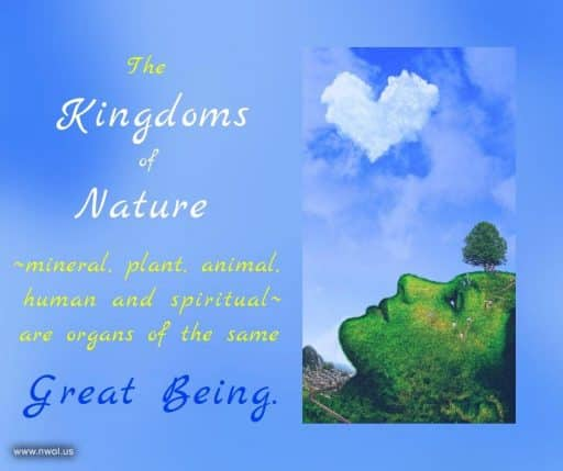 The Kingdoms of Nature—mineral, plant, animal, human and spiritual—are organs of the same Great Being.