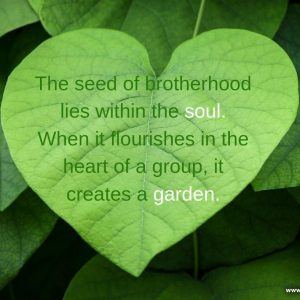 The seed of brotherhood lies within the soul