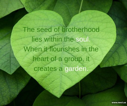 The seed of brotherhood lies within the soul. When it flourishes in the heart of a group, it creates a garden.