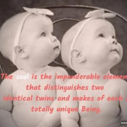 The soul is the imponderable element that distinguishes two identical twins