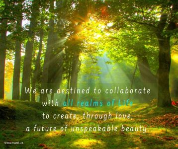 We are destined to collaborate with all realms of Life to create