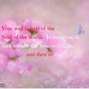 Your soul is part of the Soul of the World