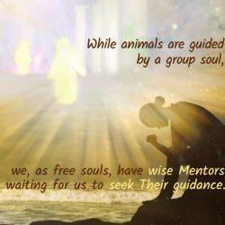 As free souls we have wise Mentors waiting for us to seek Their guidance
