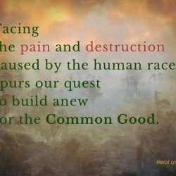 Facing the pain and destruction caused by the human race