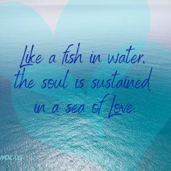 Like a fish in water the soul is sustained in a sea of Love