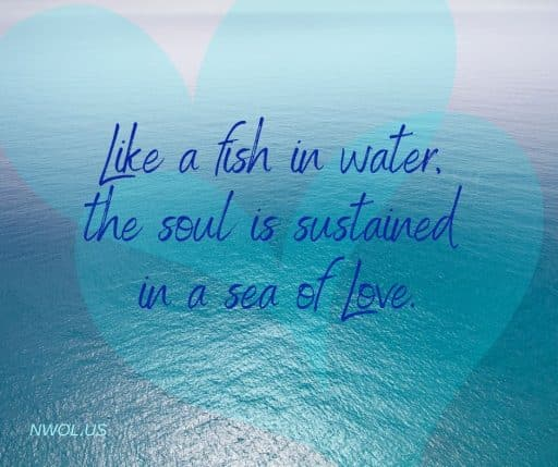 Like a fish in water, the soul is sustained in a sea of Love.
