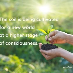 The soil is being cultivated for a new world