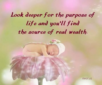 Look deeper for the purpose of life